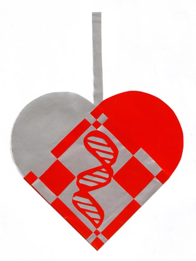 DNA julehjerte skabelon